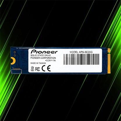 اس اس دی پایونیر APS-SE20G 256GB