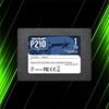 اس اس دی پاتریوت P210 1TB
